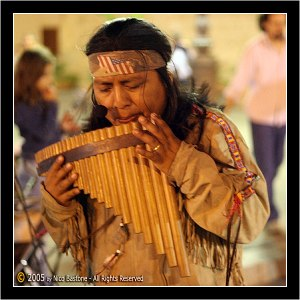 Pan-Flute-Large