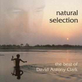 selección natural david