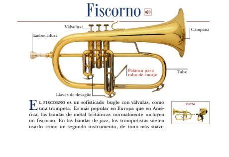 fiscorno